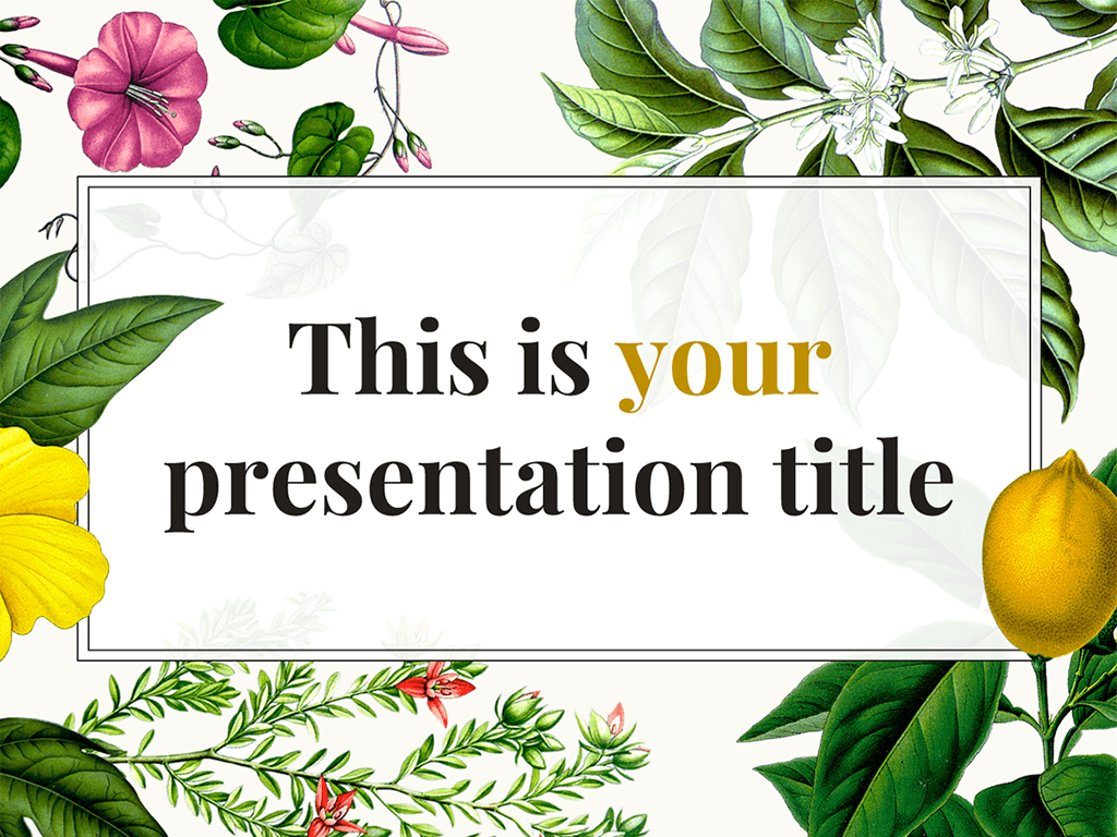 presentation design botanical illustrations