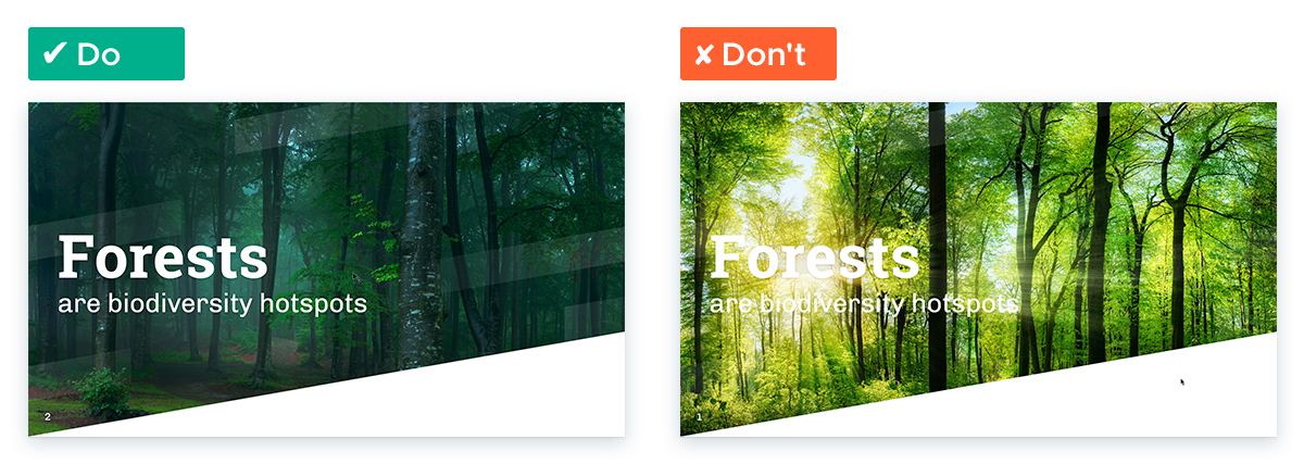 Choose the Perfect Background Photos for Your Presentation Slides - Tip 4